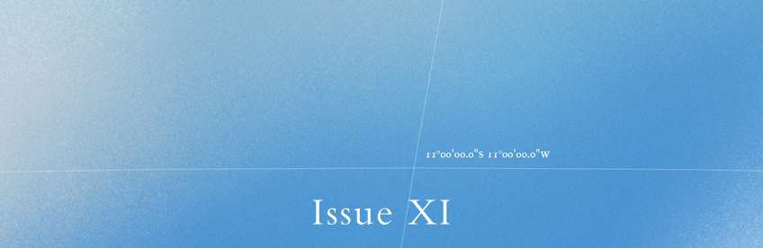 Issue Eleven